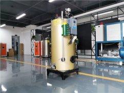 1吨蒸汽发生器_大型燃气蒸汽发生器_燃气