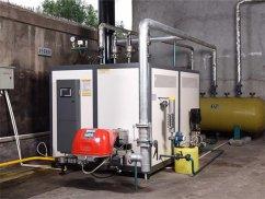 500kg蒸汽发生器_自动燃气蒸汽发生器_燃气