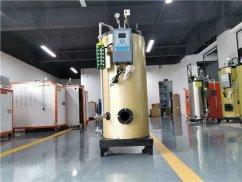 600公斤蒸汽发生器_燃气锅炉蒸汽发生器