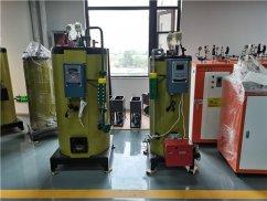 2吨燃气蒸汽发生器_酒店燃气蒸汽发生器_小型燃气蒸汽发生器公司