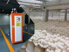 燃气锅炉低氮改造的原因所在